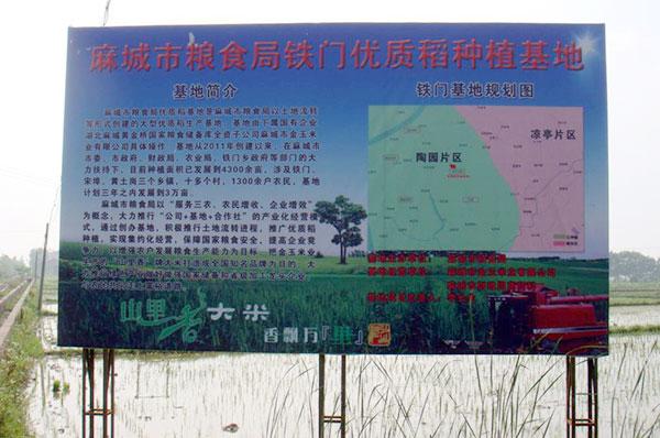 麻城市金丰农业综合开发有限公司